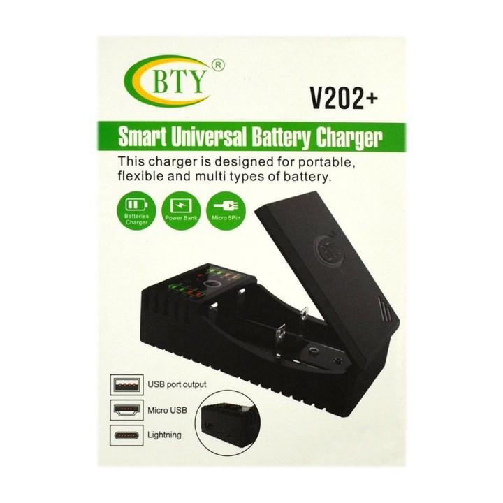 Зарядное устройство для аккумуляторов BTY V-202+ под все типы 2-х канальное