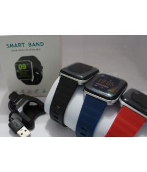 Smart Fitness Watch Q19