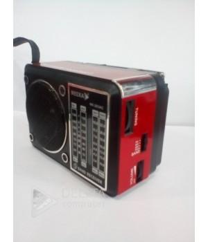 Радиоприемник NK-203AC Neeka