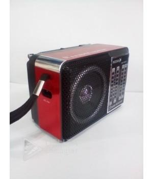 Радиоприемник NK-204AC Neeka